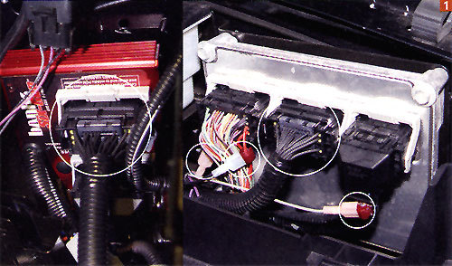 powerstroke wiring harness problems image banks power h o 6 0 on 6 0 powerstroke wiring harness problems